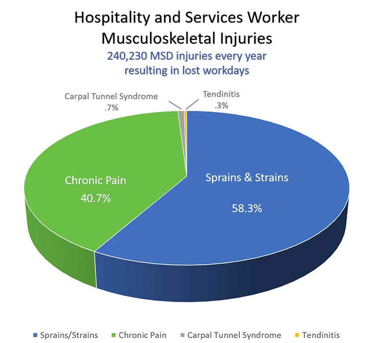 Pie Chart - Hospitality and services worker musculoskeletal injuries